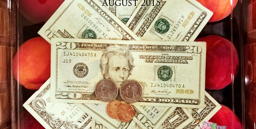 Dividend Income and Net Worth Report – August